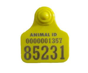 Camel ear tag laser printed